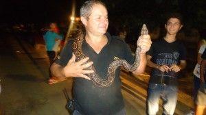 Serpiente encontrada en Chacabuco llevada al Zoo de Lujan