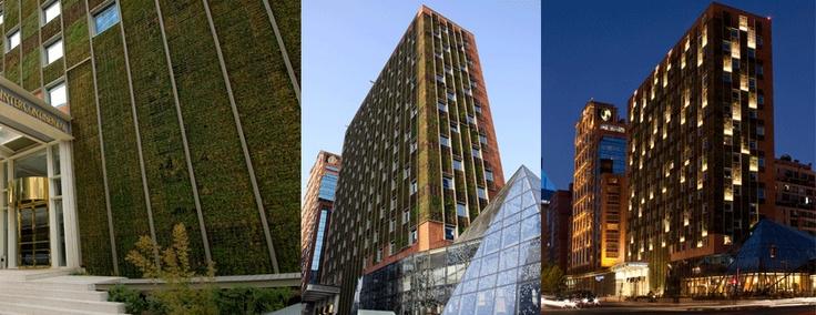 Hotel InterContinental, Santiago, Chile luce un muro verde de 17000 pies cuadrados. // boasts a 17000 sq.ft. green wall.