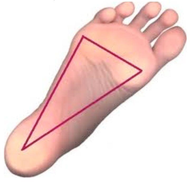 Tří bodová opora chodidla!! Při každém kroku, našlápnutí či normálním stoji na místě, je vždy důležité používat tří bodovou oporu chodidla. Vnímáme bod pod patou, malíkem a palcem.