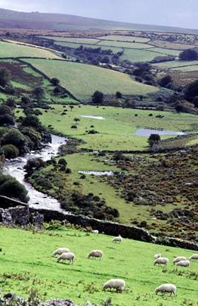 Dartmoor, UK, happy memories as a teen of damming a stream to make a pool and camp fires to cook sausages over ;)