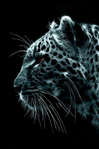Black Leopard (skin looks like cobwebs with holes)
