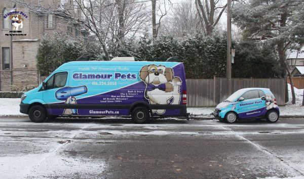 Glamour Pets Dog Grooming Vehicles How To Start Your Own Dog Grooming Business Mobilegrooming Gla Dog Grooming Mobile Pet Grooming Dog Grooming Business