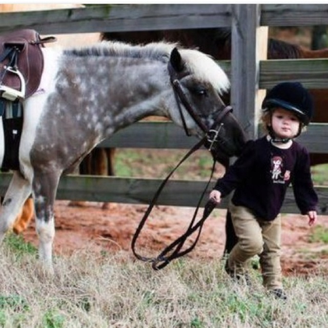 Ready for her lessonHors Bravura, Kids Riding Hors, Equine, Horses, Ponies, Friends Forever, Children, Adorable, Equestrian