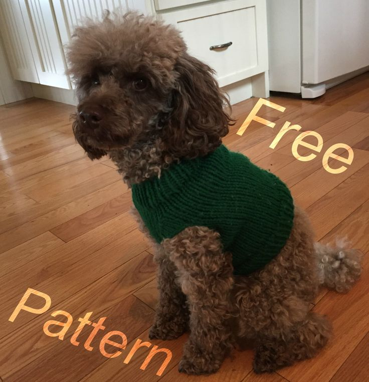Puppy Kisses Dog Sweater - Free Pattern!