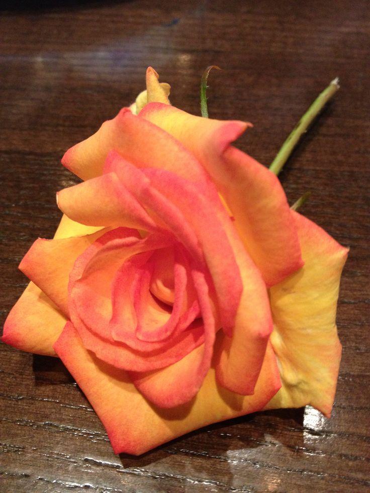 Love roses!