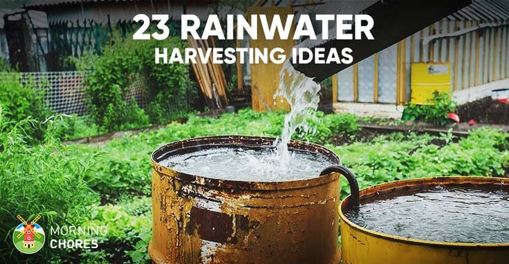 1000 ideas about rainwater harvesting on pinterest for Home rainwater collection
