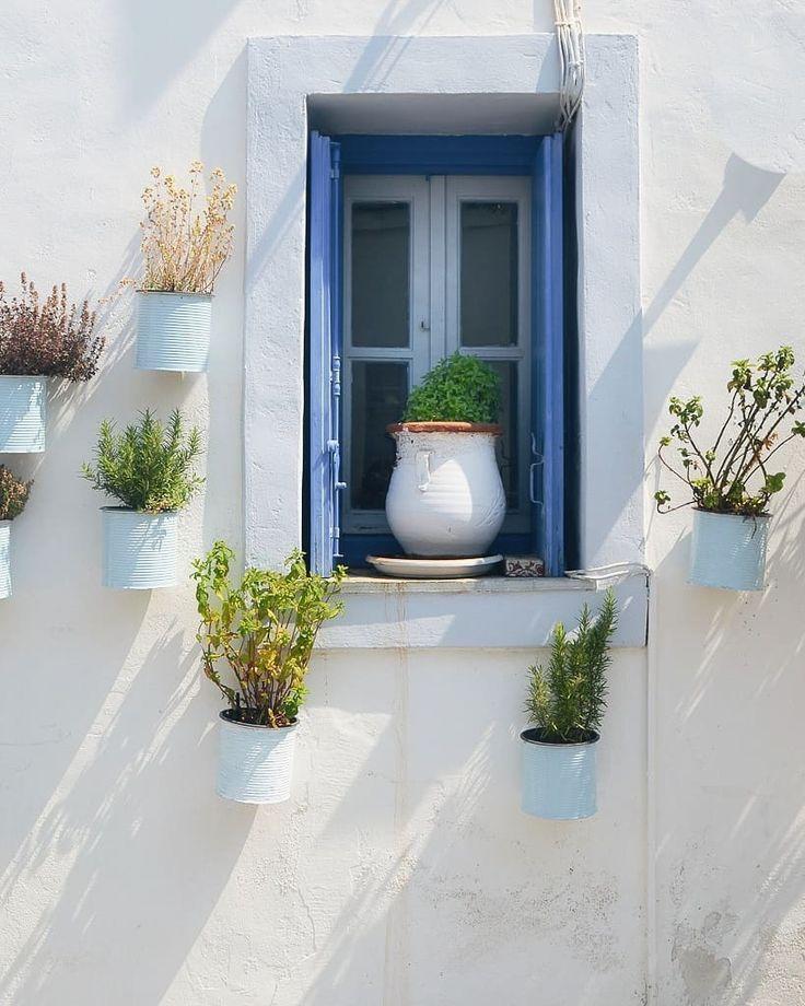 Vero Palazzo - Home Deco Palazzo, Decoration, Home Deco, Planter Pots, Windows, Cactus, Paris, Instagram, Ideas