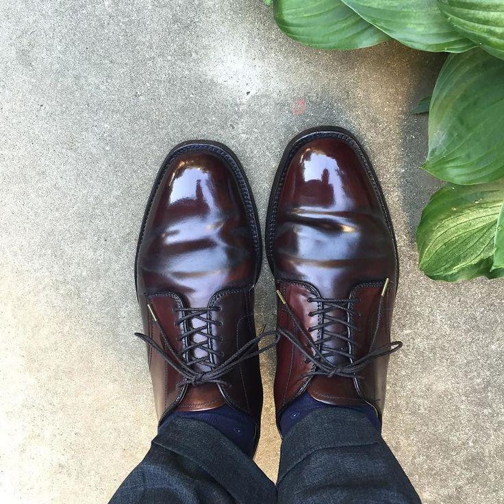 Alden 朝から暑い少し風があるので助かります #alden #cordovan #burgundycordovan #shoes #オールデン #コードバン #紳士靴 #革靴