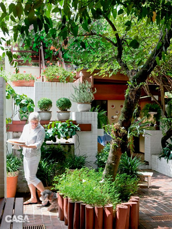 Quintal no Pinterest  Viveiro De Plantas, Arbustos e Jardim Frontal