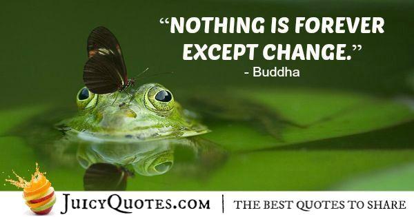 Buddha Quote - 83