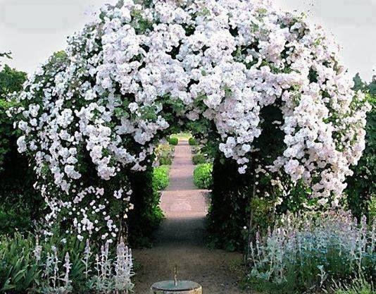 119 besten garten rosenbogen pflanzbogen ideen bilder auf pinterest g rtnern. Black Bedroom Furniture Sets. Home Design Ideas