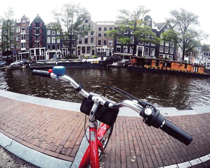 around Amsterdam, traveling, smartshops, coffeeshops, festivals, sex, love this city