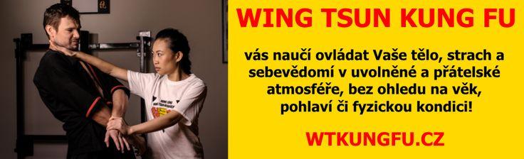 http://wtkungfu.cz -  Poznejte co je opravdový Wing Tsun...