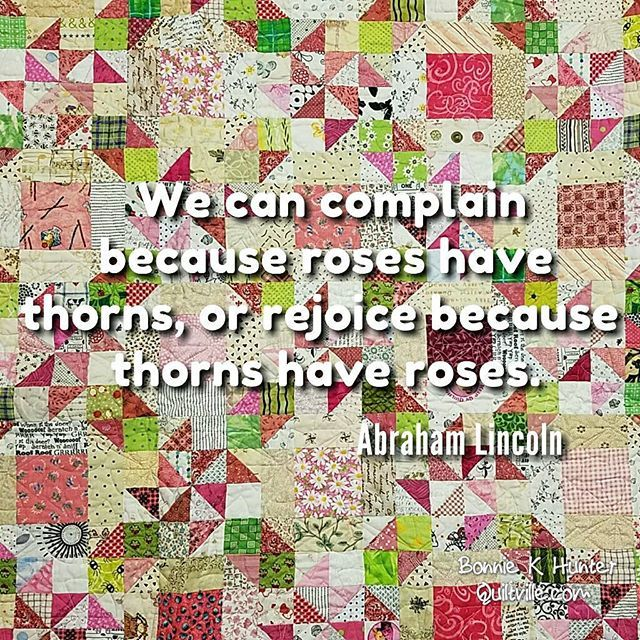 Keep your eye on the roses and not upon the thorns! Twirl Around quilt…