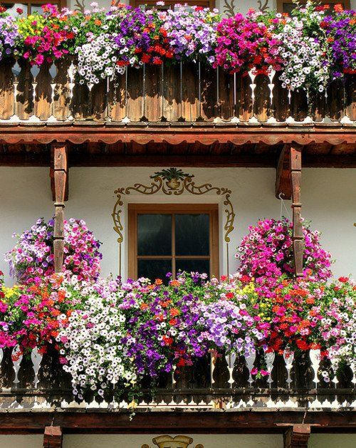 Colorful floral plants hanging from the balcony can add the beauty to the exterior