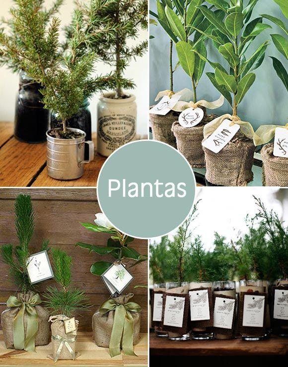 lembrancinha-vaso-plantas
