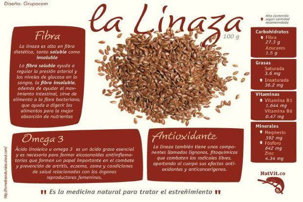 Semillas de lino y sus increíbles beneficios para el organismo
