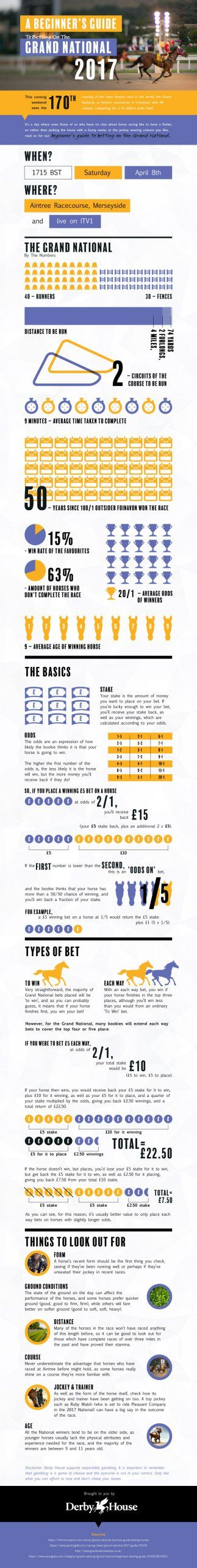 Betting guide: This Grand National infographic is all you need to read