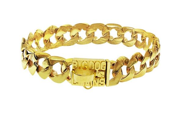 Rico gold dog collar jewelry - BIG DOG CHAINS