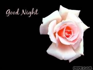 Good Night Cards for Facebook - Bing Images