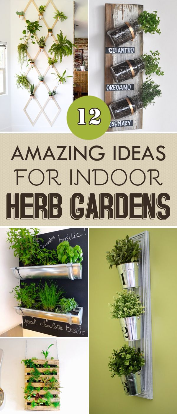 Indoor Herb Garden Best 25 Herb Garden Indoor Ideas On Pinterest  Indoor Herbs
