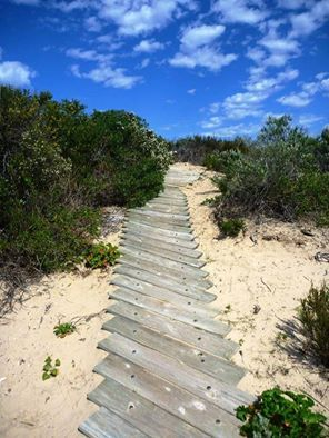You can imagine what lies at the end of this pathway…or you can find out for yourself! #SouthAustralia  Pic: Canoe The Coorong in Coorong National Park