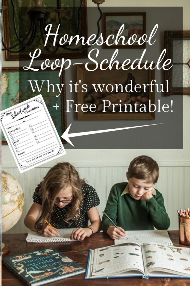 This is a graphic of Amazing Loop Schedule Printable
