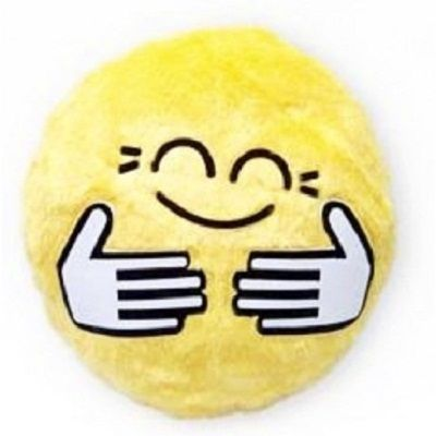 hug emoticon pillow: hug emoticon pillow