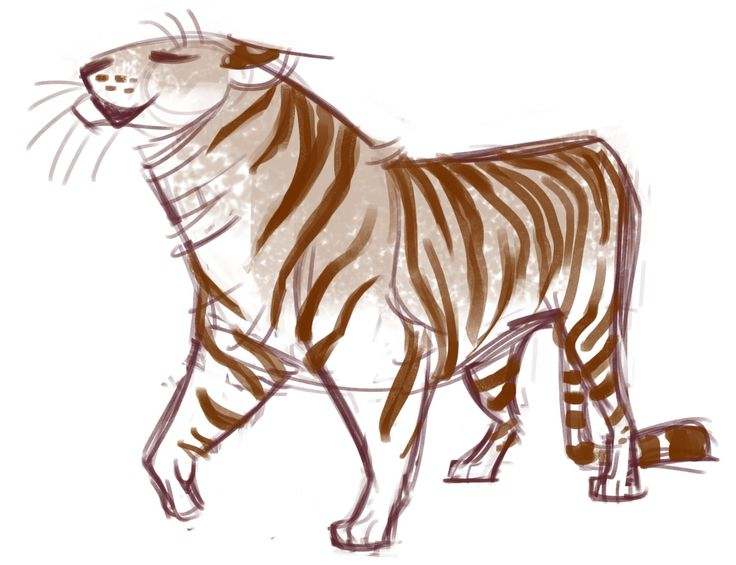 Tigre Sketch: 25+ Best Ideas About Tiger Sketch On Pinterest