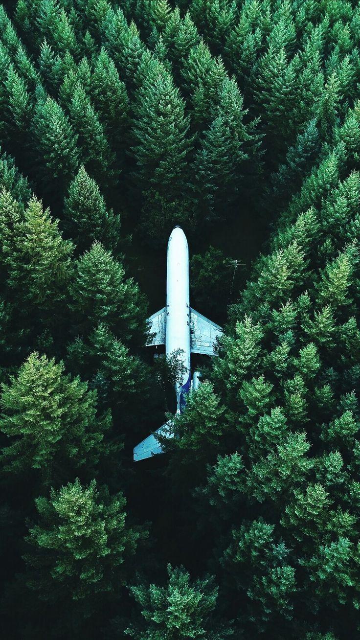 Dieses Flugzeug ist ein bisschen wie ich. Steht im Wald und kann nicht fliegen