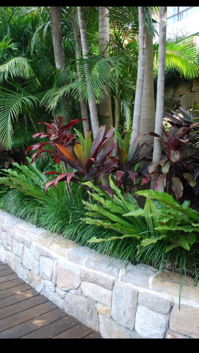 "Good use of the red ""Ti Plants"" as foliage color to contrast with the predominate green colors in this planting."