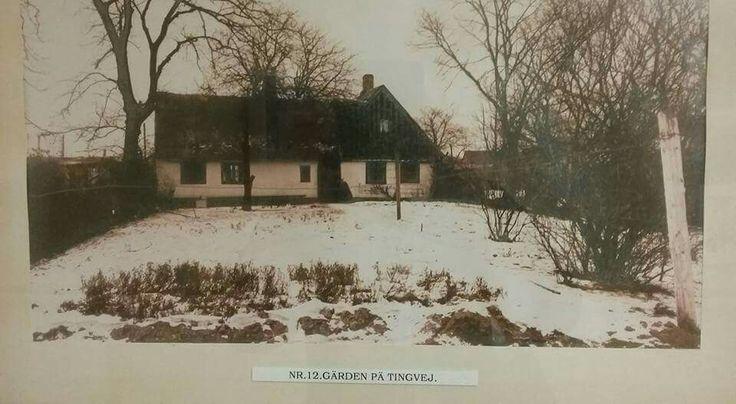 En af gårdene på Tingvej i 1907