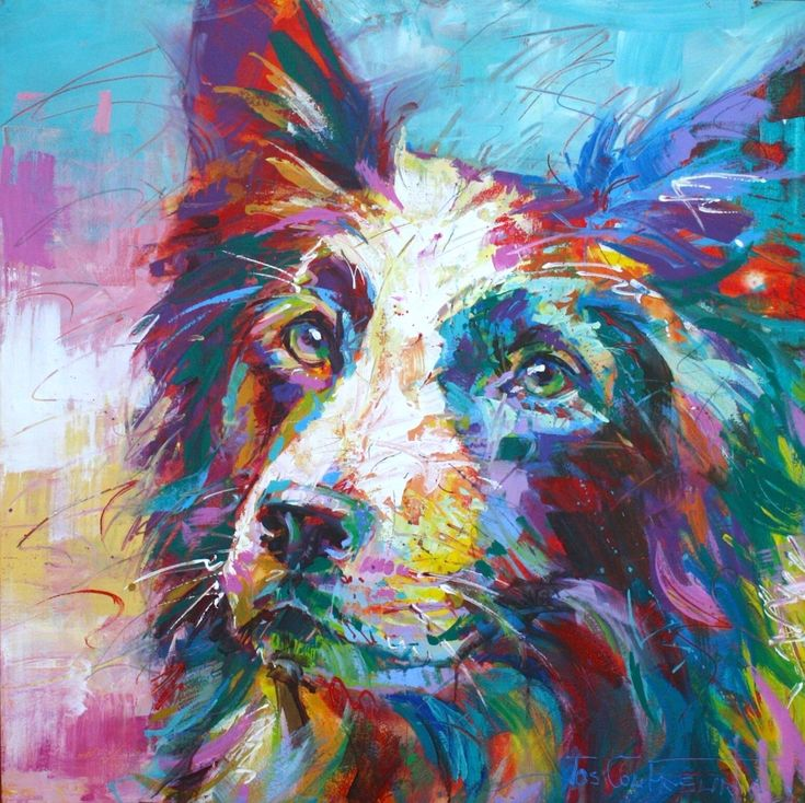 Border Collie by artist Jos Coufreur Acrylic on Canvas, 100cm x 100cm www.jos-coufreur.com