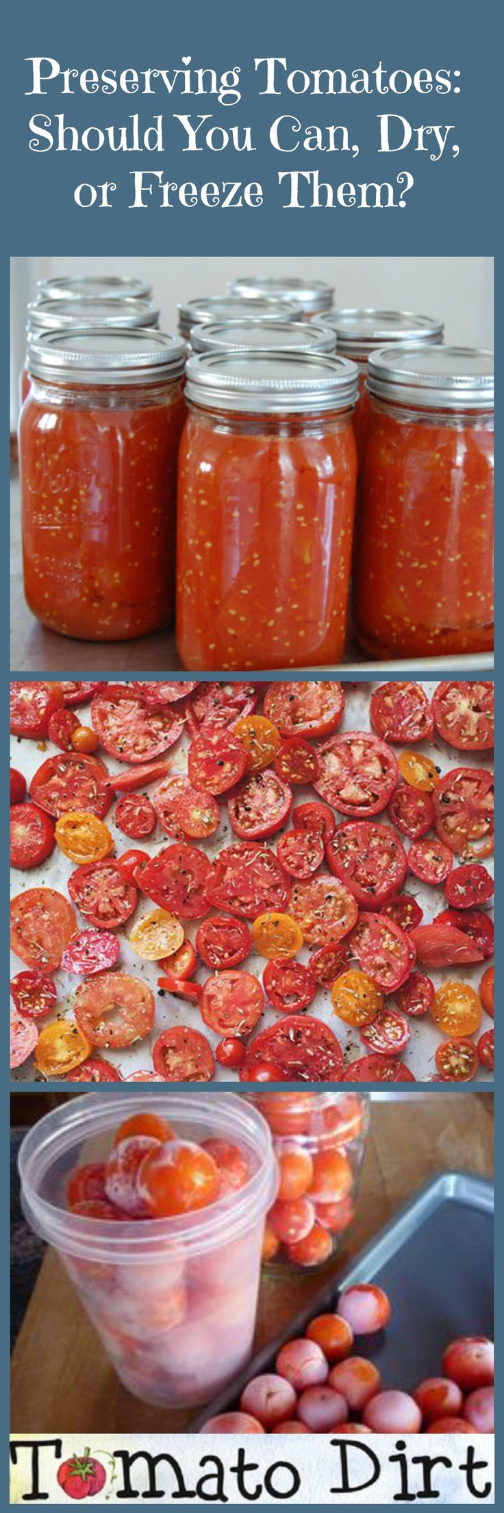 Should you can tomatoes, dry tomatoes, or freeze tomatoes? http://www.tomatodirt.com/preserving-tomatoes.html