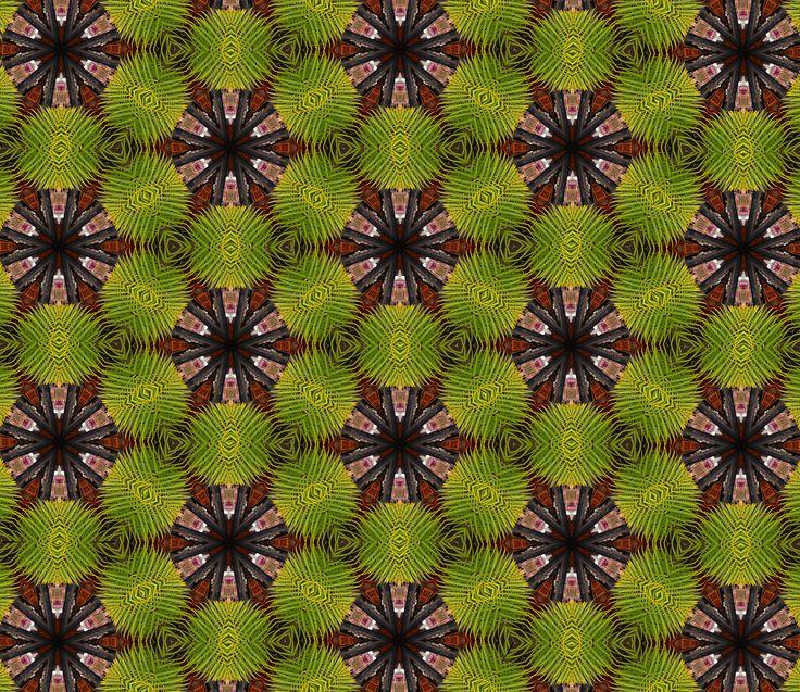 Farn #Kaleidoscope #Teleidoscope #Mandala #Green #Circles #Colours #Patterns #Photomontage