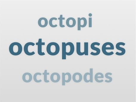 What's the correct plural of 'octopus': 'octopuses' or 'octopi'? Yes – and then some.