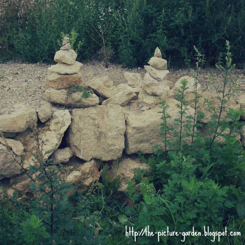 The Picture Garden: Project 365 - Day 259