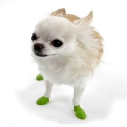 @Overstock.com - Pawz Tiny Green Dog Booties (Pack of 12) - Pawz dog booties offer protection from ice, snow, salt, lawn chemicals, allergies, hot pavement and more. The booties are disposable, reusable, waterproof, and biodegradable.    http://www.overstock.com/Pet-Supplies/Pawz-Tiny-Green-Dog-Booties-Pack-of-12/6609034/product.html?CID=214117 $12.99