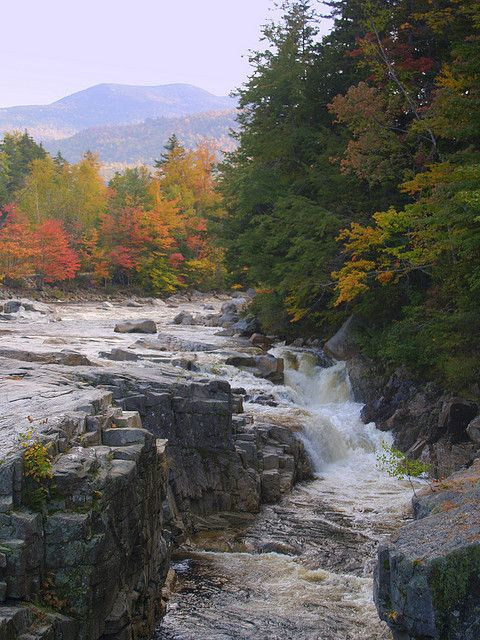 Kancamagus Scenic Byway | Love my home state!