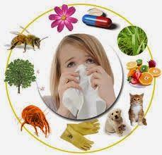 La Farmacia En Tu Casa: Como evitar las alergias: Parafarmacia online