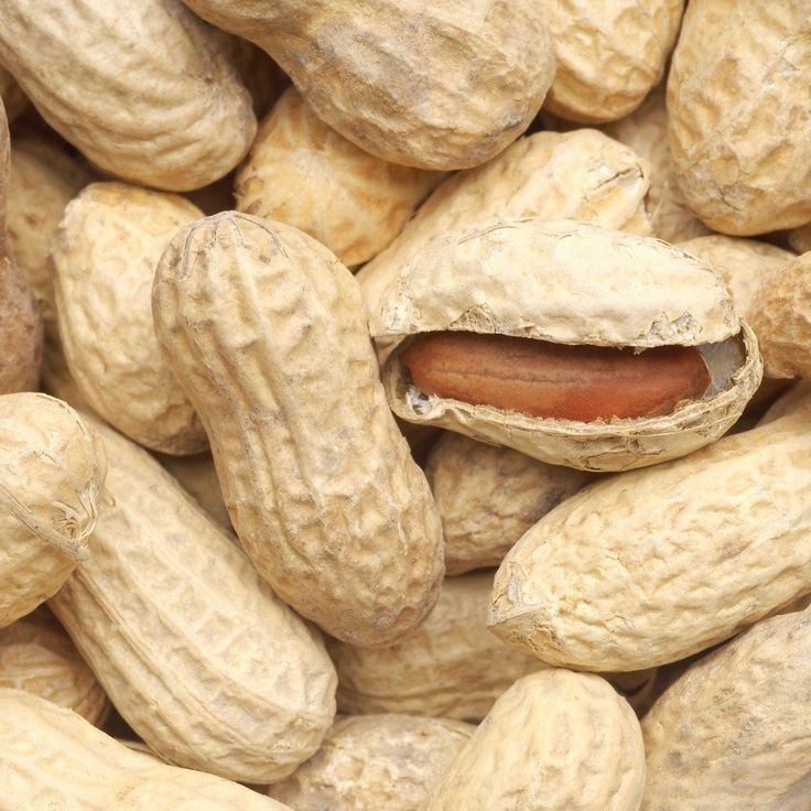 Cracking open a peanut shell reveals an edible package of naturally protective nutrients. Peanuts provide unique bioactive components that act as antioxidants and have been shown to be disease preventative.