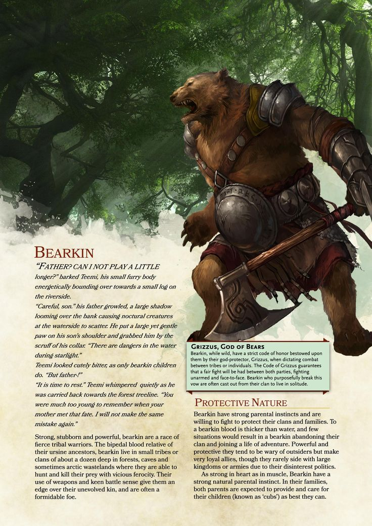 The Bi-Weekly Homebrew Review! #16: Bearkin Race #Race #Homebrew