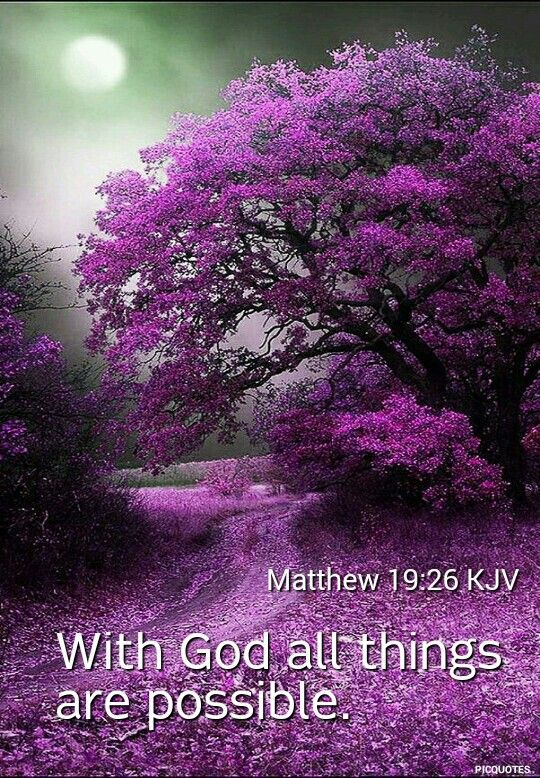 Matthew 19:26 KJV -  But Jesus beheld them, and said unto them, With men this is impossible; but with God all things are possible.: