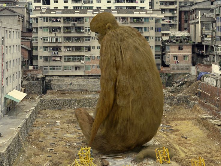 #liu_di #china #artist #urban #animal_regulation #wild_animal #monkey #singe #porc #pig #rhinoceros #giant #landscape #central_academy_of_fine_arts #noipic