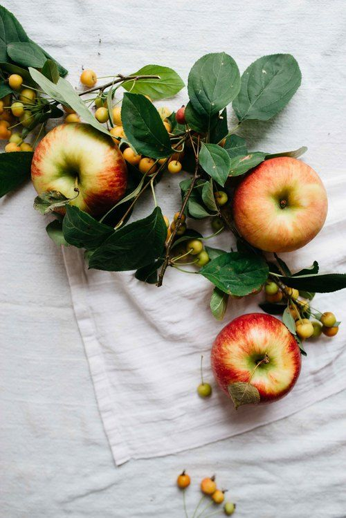 autumn apples | dolly and oatmeal