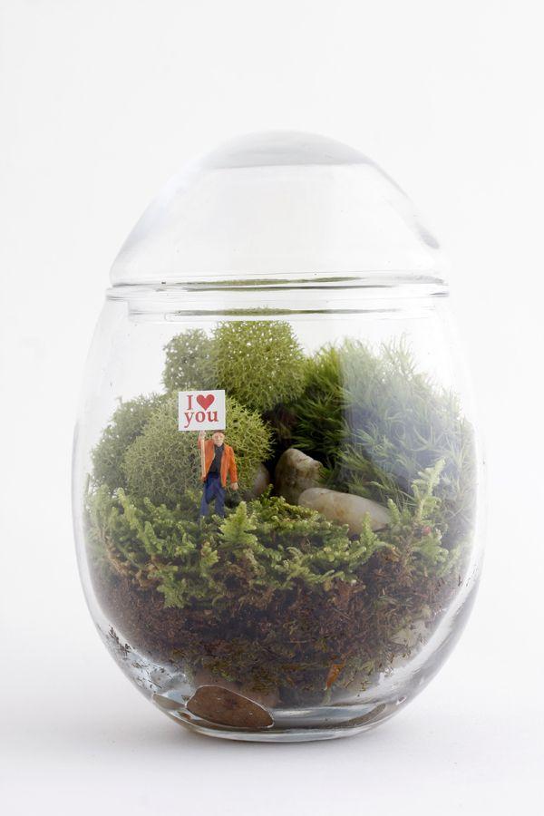 Gentle Reminder - I <3 you terrarium    so cute!