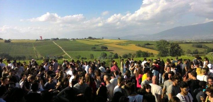 Sono 57 le cantine dell'Umbria che hanno aperto le porte sabato 28 e domenica 29 maggio per la 24esima edizione di Cantine Aperte. Nonostante il meteo ballerino, grande il successo di pubblico nelle cantine umbre.