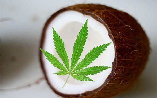 Natives Kokosnussöl ist für sich genommen bereits eines der erstaunlichsten Produkte für die Gesundheitsfürsorge und Schönheitskuren. Ich benutze es für meine Haarkur, als Feuchtigkeitspflege für d…