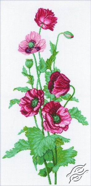 Poppies - Cross Stitch Kits by RTO - M081
