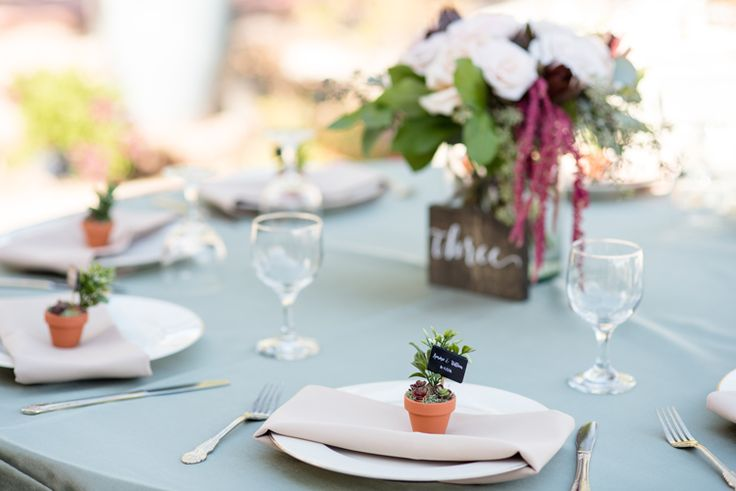 Succulent wedding ideas: mini succulent favors at each guest's place setting (Maura Jane Photography)
